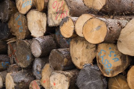 free lumber for all of your diy projects