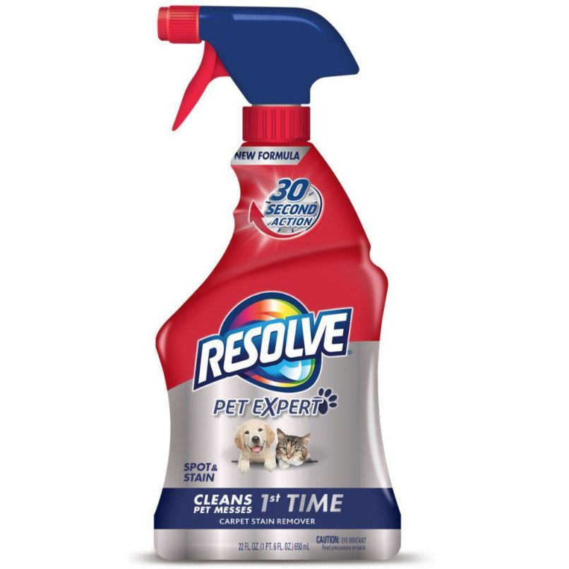 Best Carpet Cleaner Shampoo For Cat Urine Www Resnooze Com