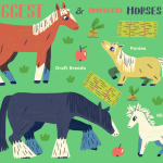 The Largest And Smallest Horse Breeds Around The World