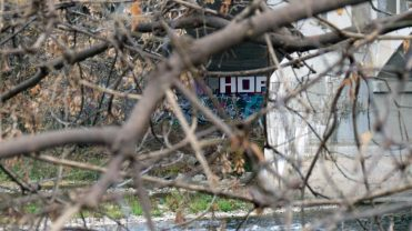 """A squirrels view of some of the street art that can be found on the Grand River Trail."""