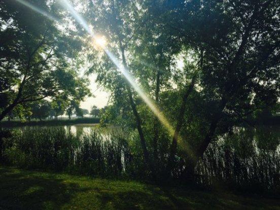 Morning light over the Veteran's Park Lagoon.