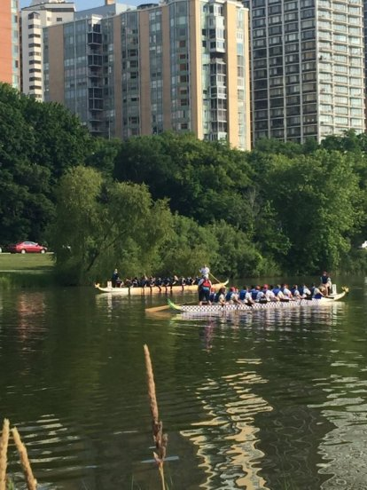 Dragon Boat competition. All photos by Erin Bayliss.