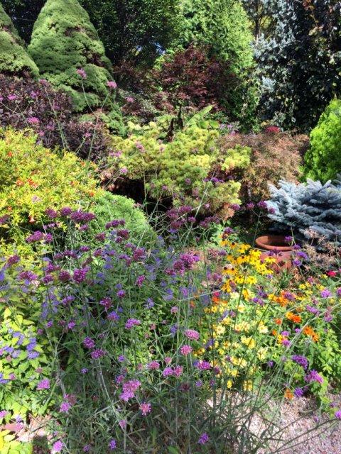 Sanger House Gardens (7) sd