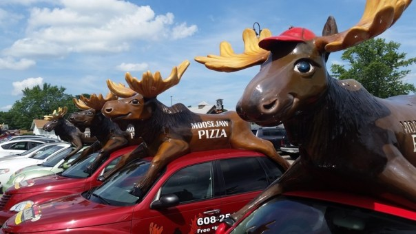 And moose cars.