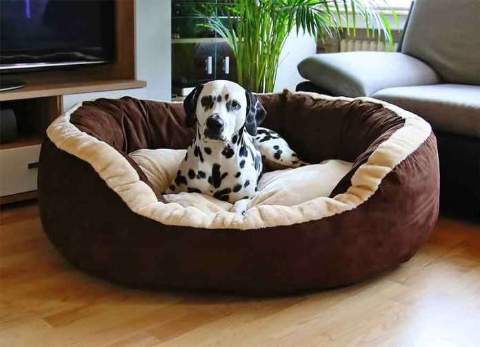 Knuffelwuff Heaven Dog Bed
