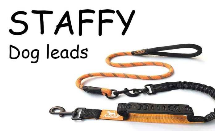 Staffy Dog Leads
