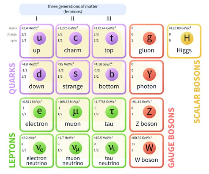 Diagramma che mostra il modello standard della fisica delle particelle. La materia è composta da leptoni e quark. Ci sono sei quark e sei leptoni. Ci sono anche quattro bosoni di gauge più il bosone di Higgs.