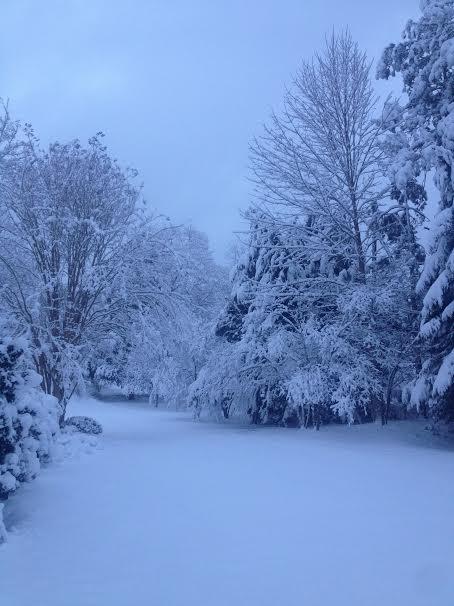 snowpath3