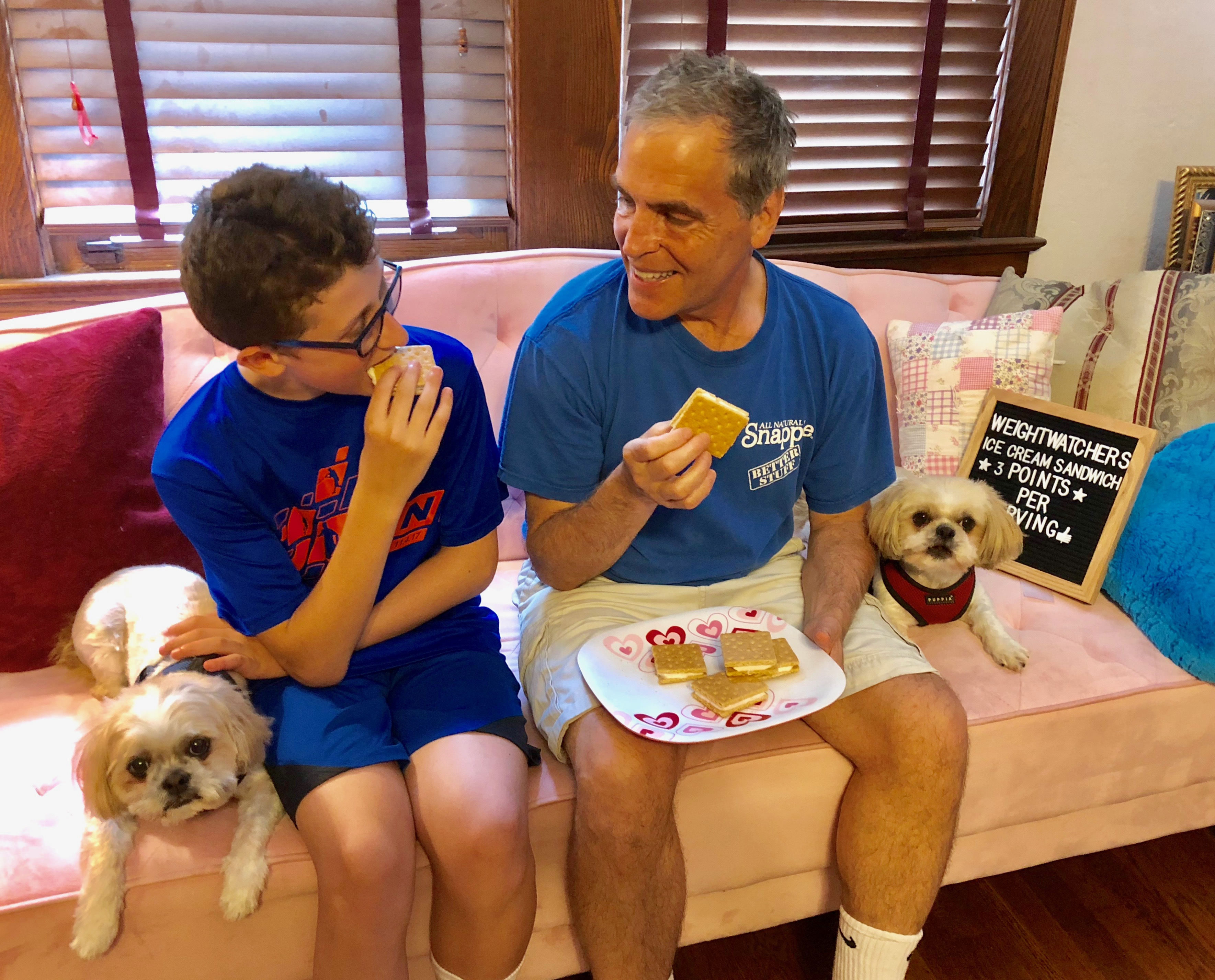 Weight Watchers Faux Ice Cream Sandwich Recipe - Just 3 Smart Points