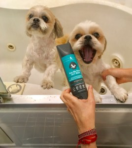 Activities to Bond With Your Pooch and Keep Him Happy and Clean with Rufus & Coco