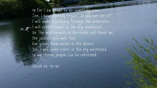 Isaiah 43-19-20