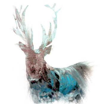 The Steel Rooms Blue Stag Card
