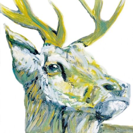 Stag Card by Julie Steel
