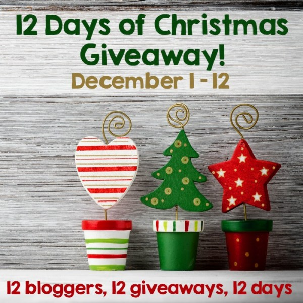 12 Days of Christmas Giveaway www.thestitchinmommy.com