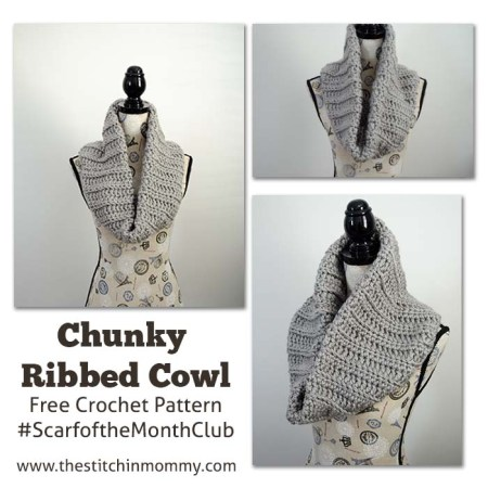 Chunky Ribbed Cowl - Free Crochet Pattern - Scarf of the Month Club hosted by The Stitchin' Mommy and Oombawka Design   www.thestitchinmommy.com
