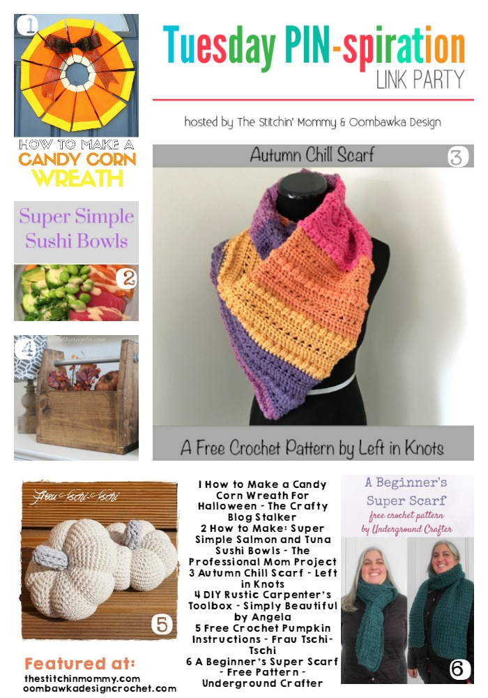 The NEW Tuesday PIN-spiration Link Party Week 13 (10/3/2016) - Rhondda and Amy's Favorite Projects   www.thestitchinmommy.com