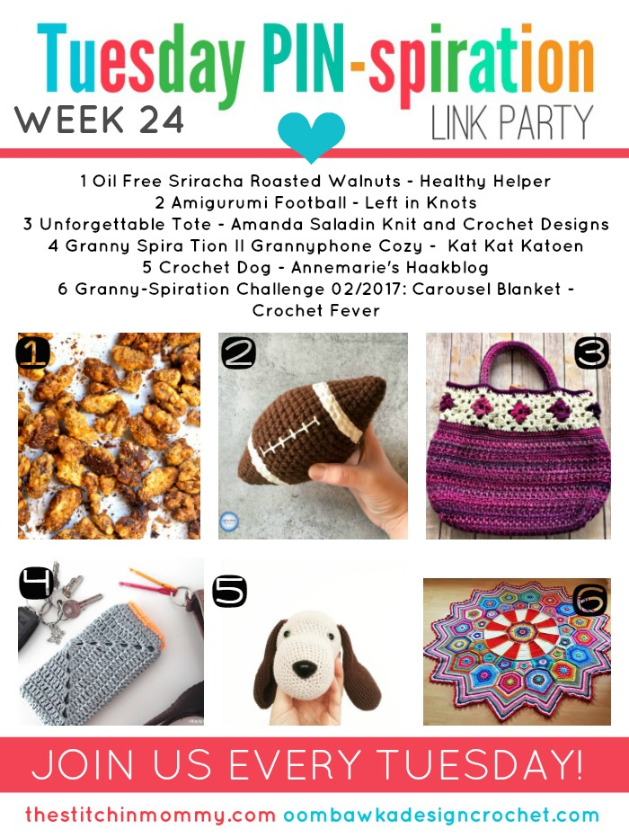 The NEW Tuesday PIN-spiration Link Party Week 24 (2/13/2017) - Rhondda and Amy's Favorite Projects | www.thestitchinmommy.com