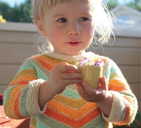 Sweet Pickles - 27 Adorable Knits for Babies and Toddlers by Anna Enge and Heidi Grønvold, published by Martingale - Book Review   www.thestitchinmommy.com