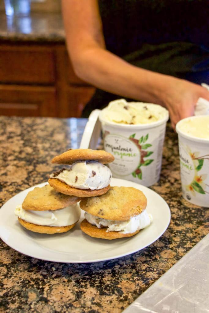 Snoqualmie Organic Ice Cream