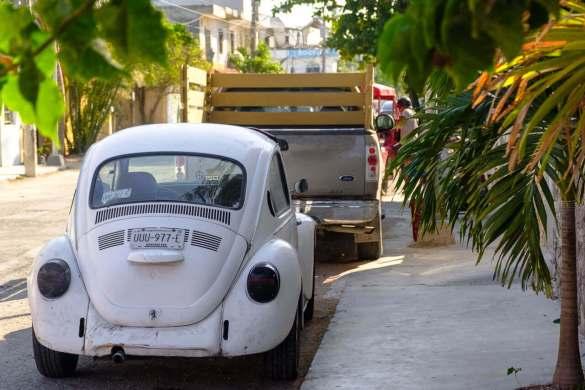 beetle-volkswagen-tulum