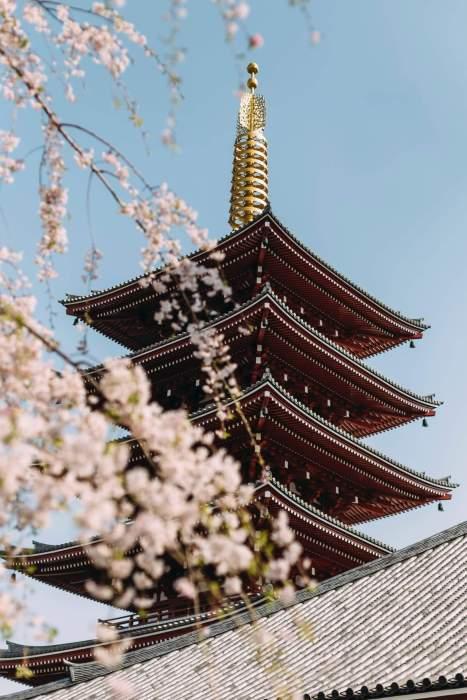 Japon_voyager