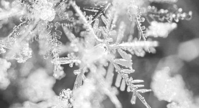 Die Schneeflocken-Methode – Schritte zum eigenen Buch