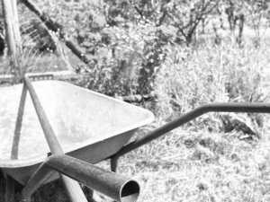 Schubkarre in einem Garten