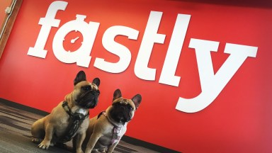 Fastly Plunges After Sales Forecast Miss and Financial Chief Departure