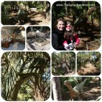 Bervard Zoo Dinosaurs Dead or Alive Exhibit