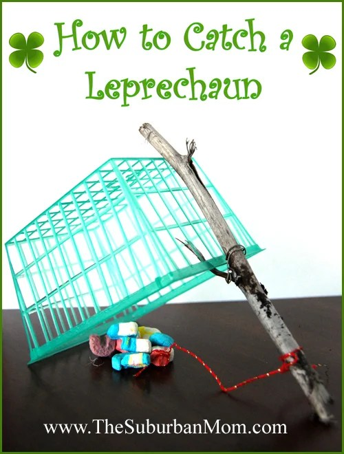 How to Catch a Leperchaun