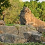 Up Close With Animal Kingdom's Wild Africa Trek