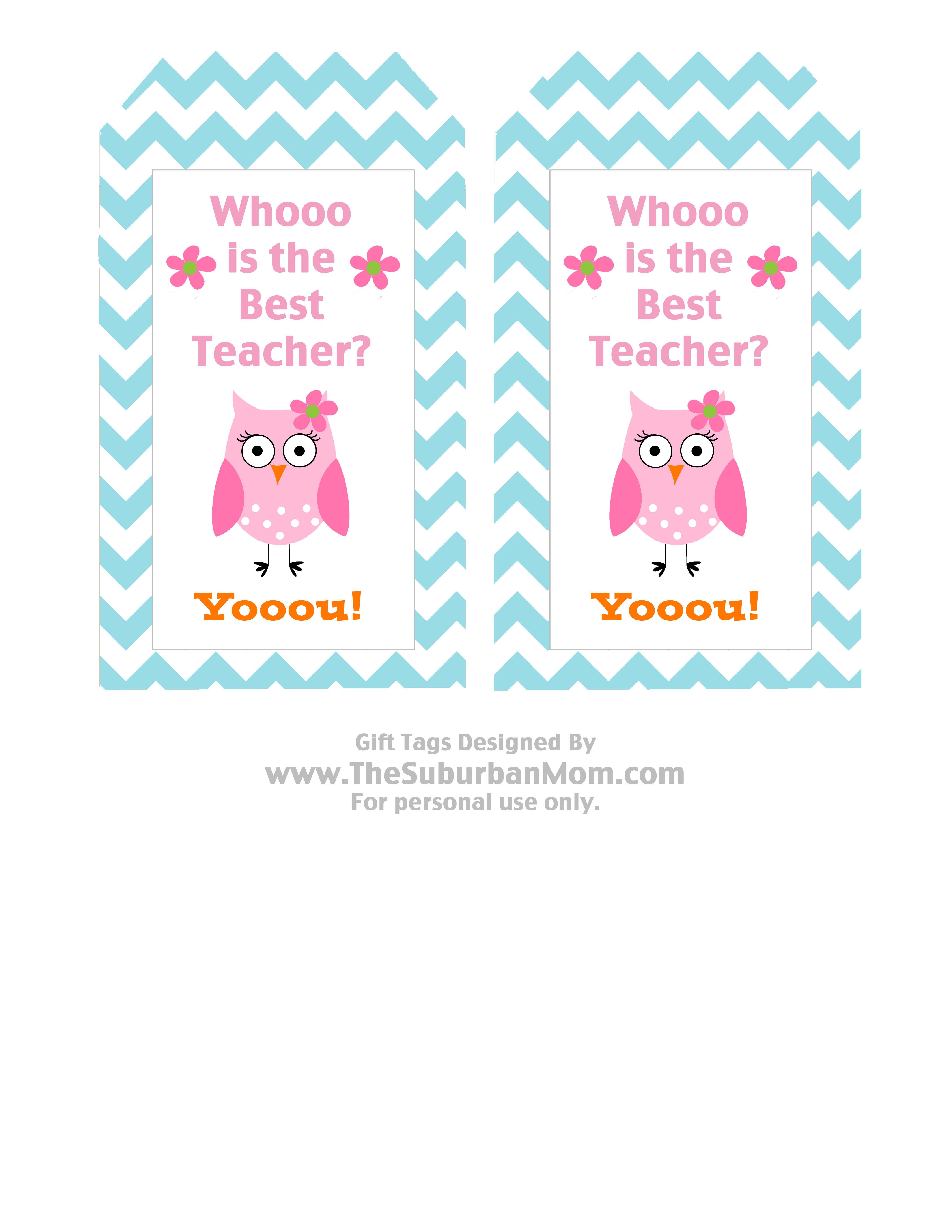 Teacher Appreciation Basket Amp Free Owl Printable Tag