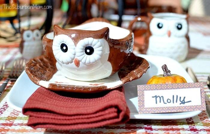 Better Homes Gardens Owl Placesetting
