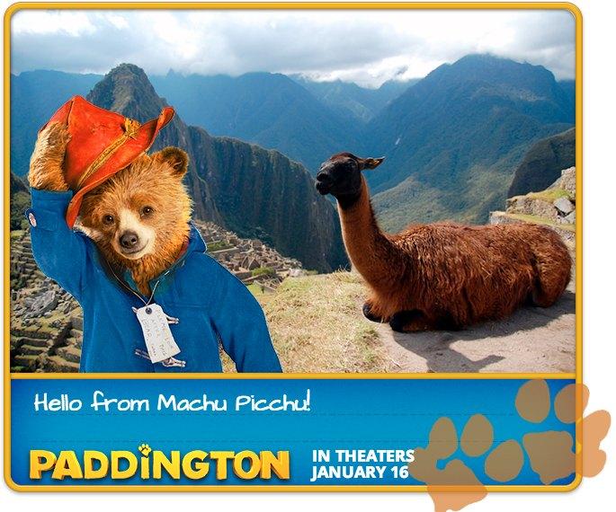 Paddington E-card App