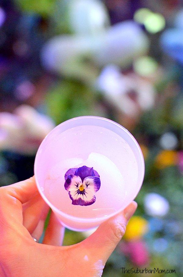 Flower and Garden Slushie