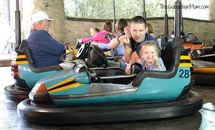 Busch Gardens Bumper Cars