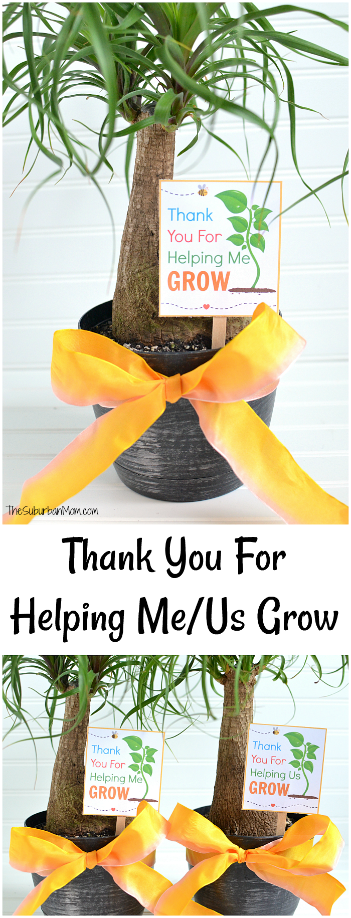 image regarding Thanks for Helping Me Grow Free Printable identify Thank Yourself For Encouraging Me Mature Absolutely free Printable (Us Model Far too!)