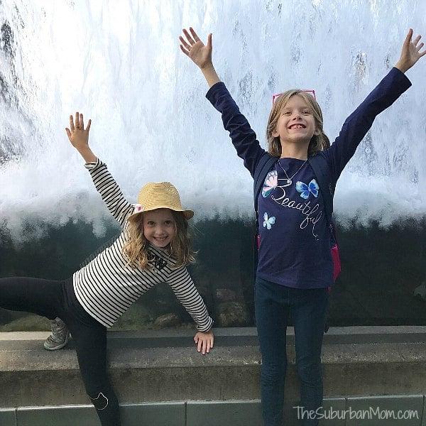 Kids Fun Monterey Bay Aquarium