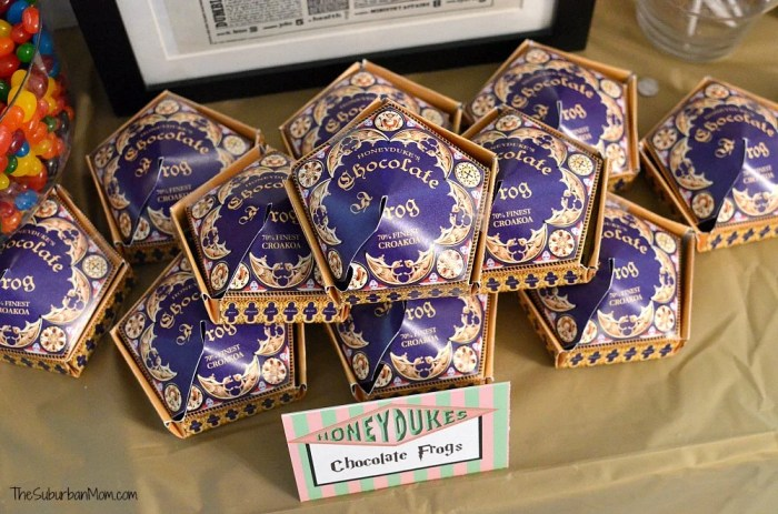 Harry Potter DIY Chocolate Frogs Boxes