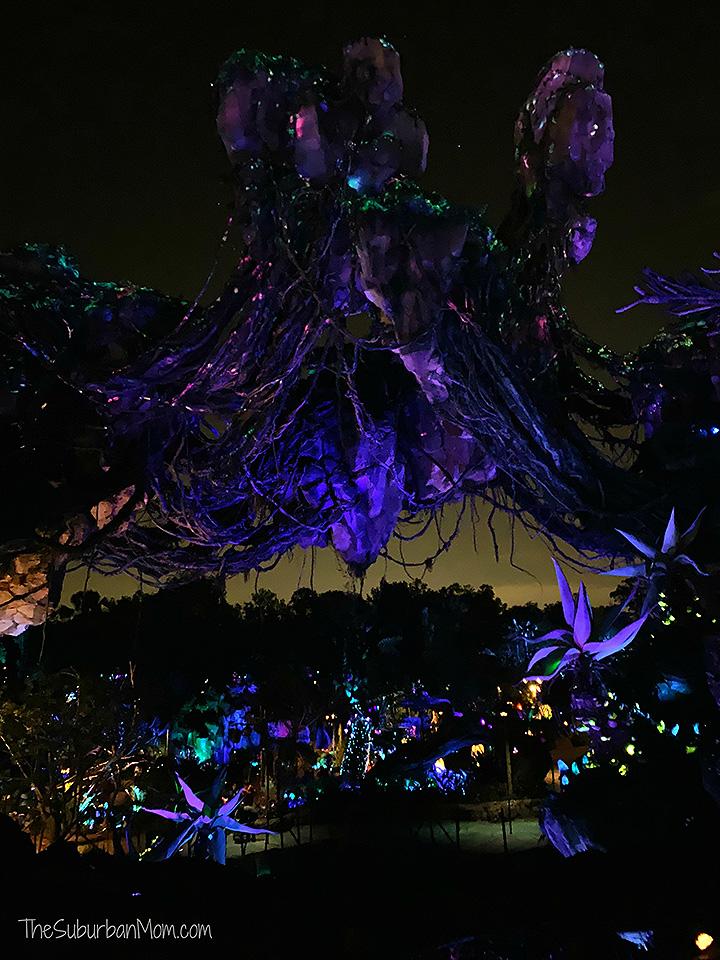 Pandora At Night