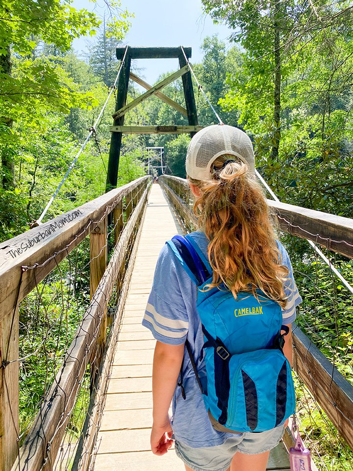 Toccoa Swinging Bridge Geogia Hike With Kids