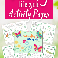 Free Printable Butterfly Lifecycle Activity Pages