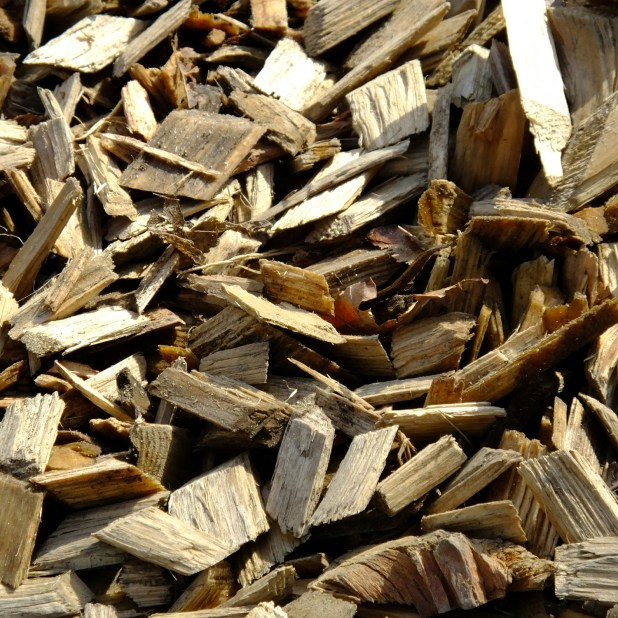 Cellulose is one of the main building blocks of wood. It is used in some foods like tortilla wraps