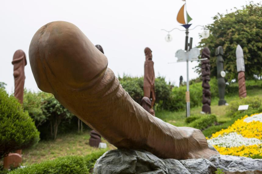 Image result for penis park