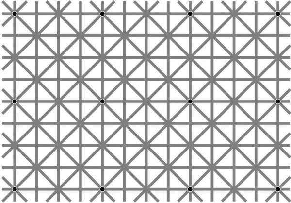 optical illusions find cat # 74