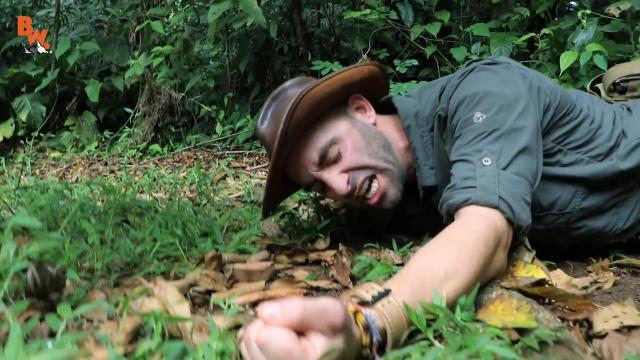 Image result for Coyote peterson