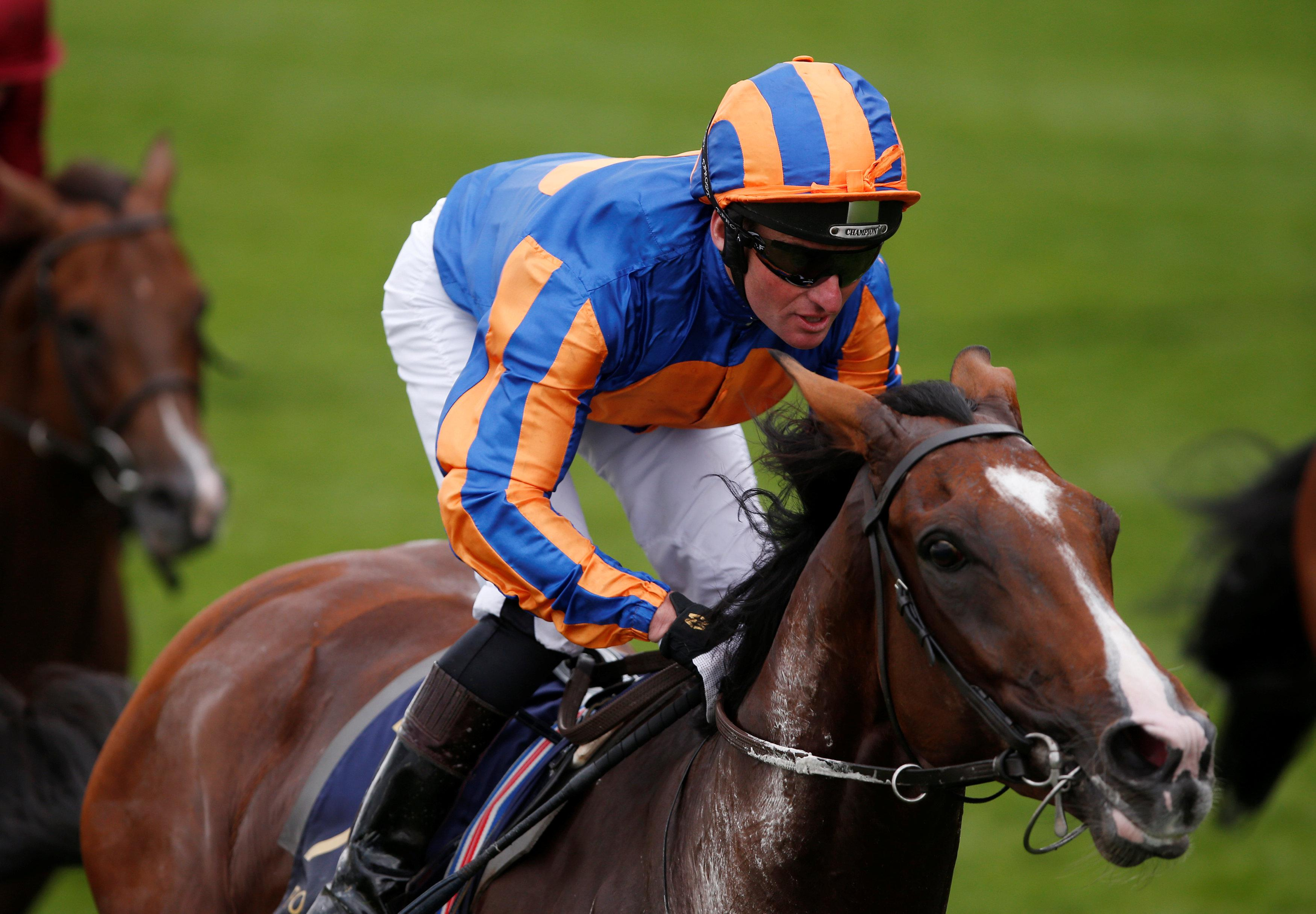 Idaho bidding to give Aidan O'Brien a second Sheema Classic win
