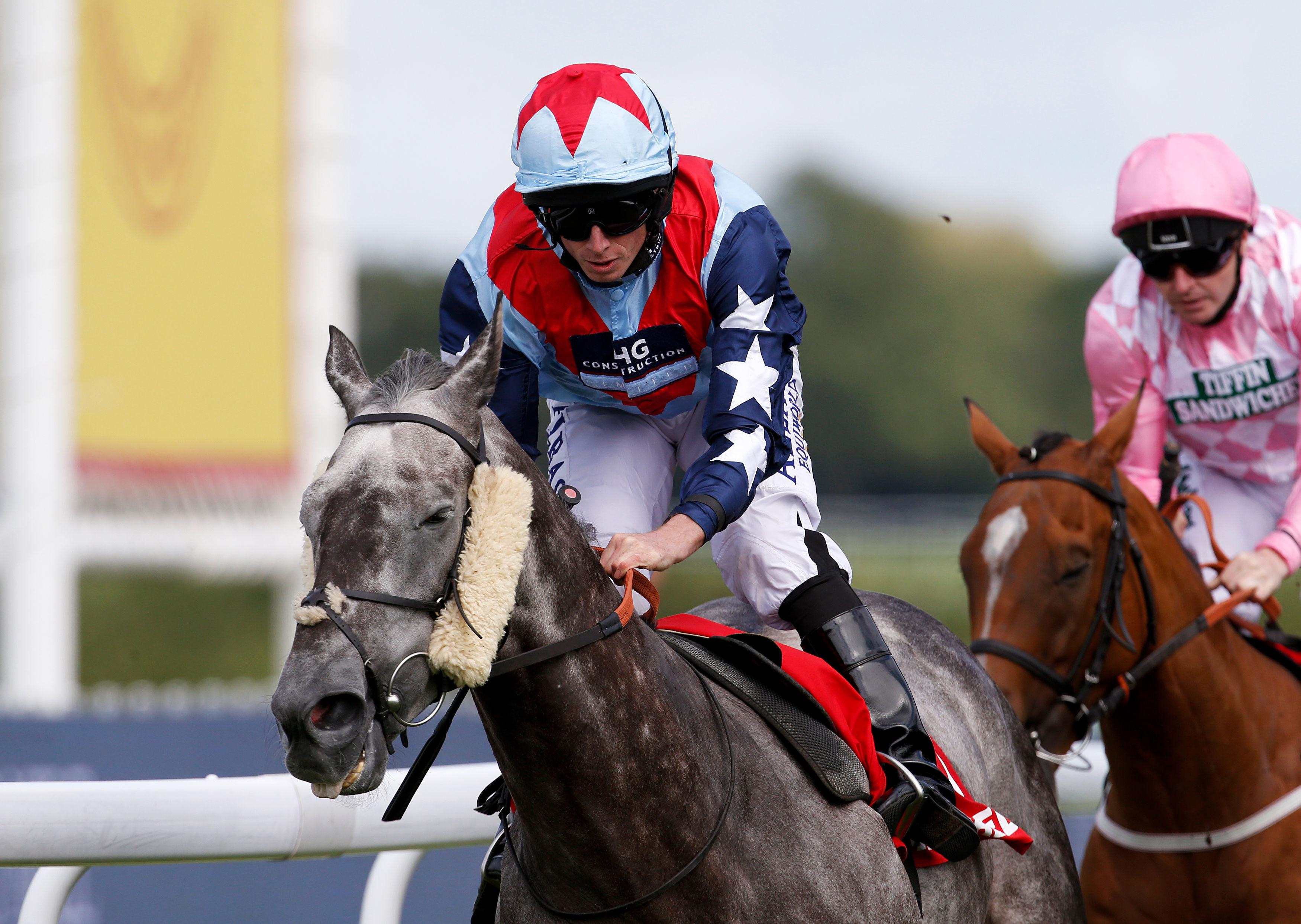 Master The World won the Winter Derby after a Stewards' Inquiry