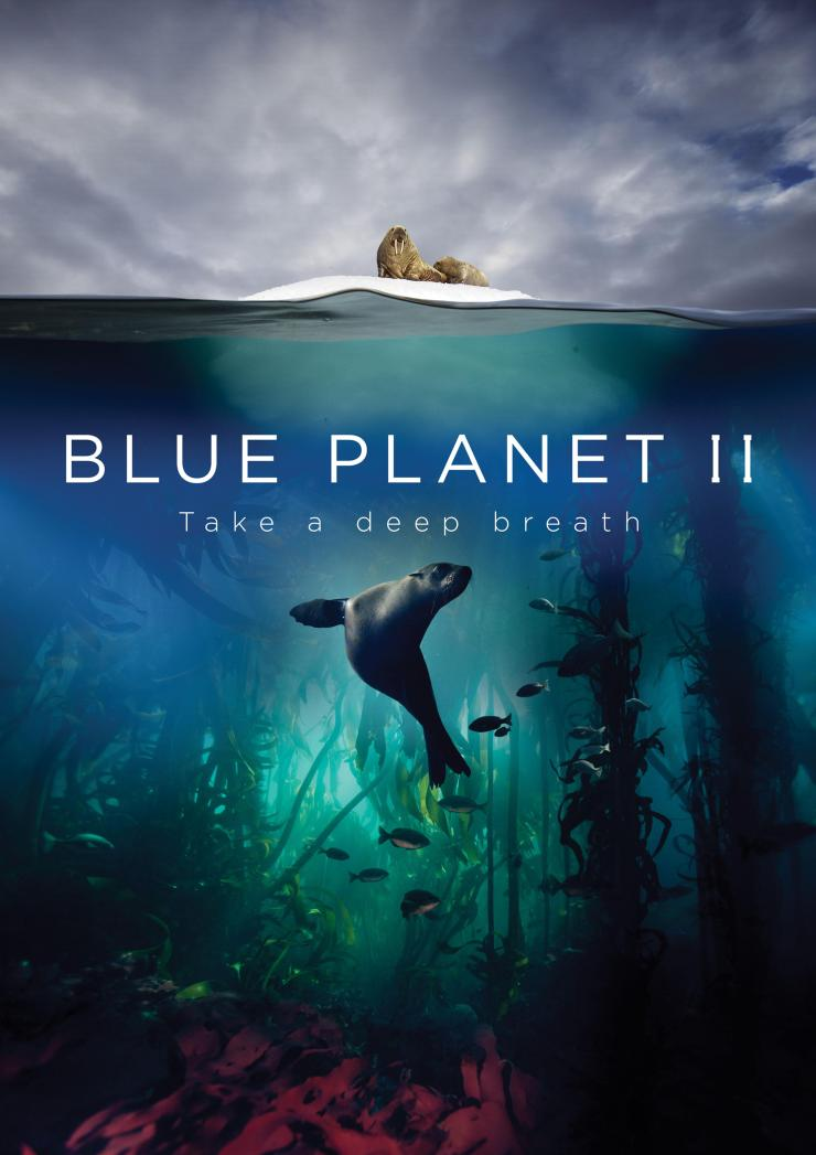 The new season of Blue Planet promises some staggering encounters - narrated by Sir David Attenborough