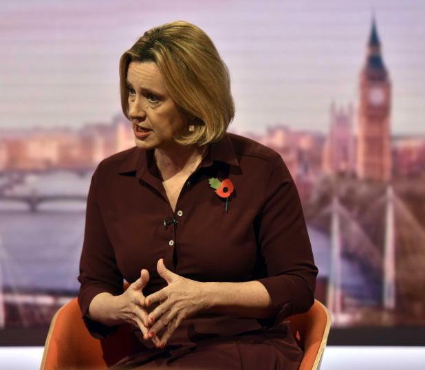 The Home Secretary refuted claims that the increasingly worsening fallout could bring down Theresa May's administration